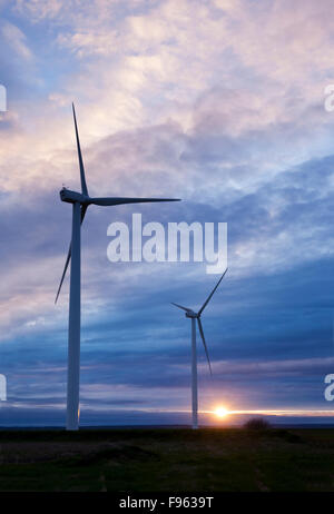 Two wind turbines silhouetted against the setting sun. The turbines are among 15 at the Amherst Wind Farm located - Stock Photo
