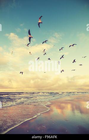 Vintage stylized flying birds above a beach at sunset. - Stock Photo