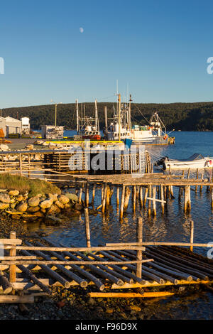 Fishing boats tied up at wharf, Cape Broyle, Newfoundland, Canada - Stock Photo