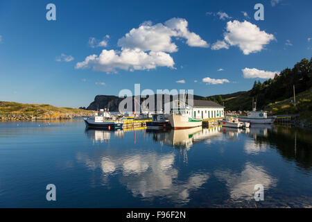Fishing boats tied up at wharf, Brigus South, Newfoundland, Canada - Stock Photo