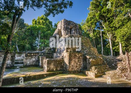 Estructura V, pyramid with temple on top, Maya ruins, Hormiguero archaeological site, La Ruta Rio Bec, Yucatan Peninsula, - Stock Photo