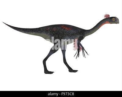Gigantoraptor was a theropod dinosaur that lived in Inner Mongolia, China in the Cretaceous Period. - Stock Photo