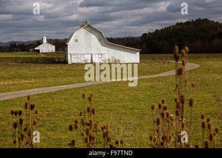 Green Bank, West Virginia - Barns on a farm in rural Pocahontas County. - Stock Photo