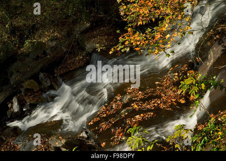 Rushing water flowing down a mountain steam in the fall. - Stock Photo