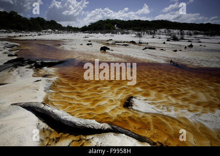 Tannin water in feeder creeks to Lake Boomanjin,  Fraser Island, Australia. - Stock Photo