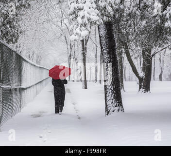 Woman alone walking away in storm, red umbrella and black coat forest walking path in snow in a park, New Jersey - Stock Photo