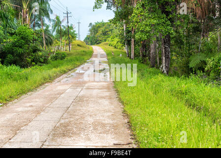 Highway running through the Amazon rain forest near Leticia, Colombia - Stock Photo