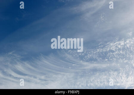 cirrus clouds in the blue sky on sunny day - Stock Photo