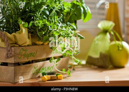 chalk signe name herbs - Stock Photo