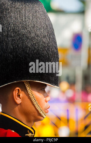 Profile of member of the Thai royal guard military wearing high fuzzy hat during the King's birthday parade - Stock Photo