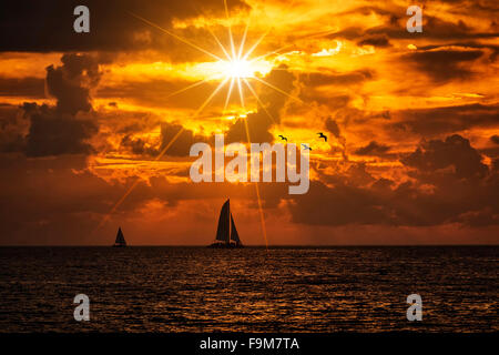 Silhouetted boat sailing along its journey against a vivid colorful sunset with birds - Stock Photo