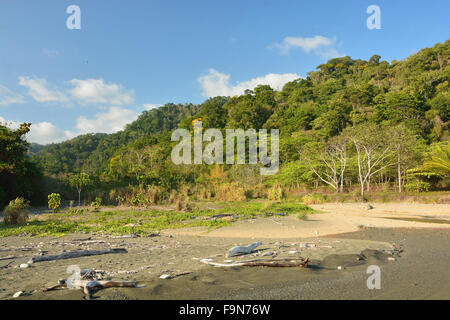 Beach in Corcovado National Park Costa Rica - Stock Photo