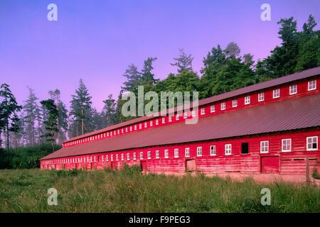 Red Barn on Whidbey Island, Washington State, USA - Stock Photo