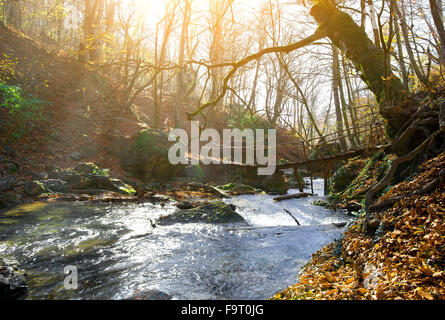 Wooden bridge and mountain river in autumn - Stock Photo