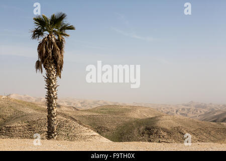 Israeli mountains in spring - Stock Photo