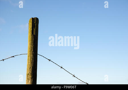 Fence post with old barb wire at blue sky - Stock Photo