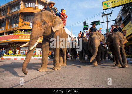 Herd of elephants and riding tourist passengers marching in downtown Surin during the annual Surin Elephant Roundup - Stock Photo