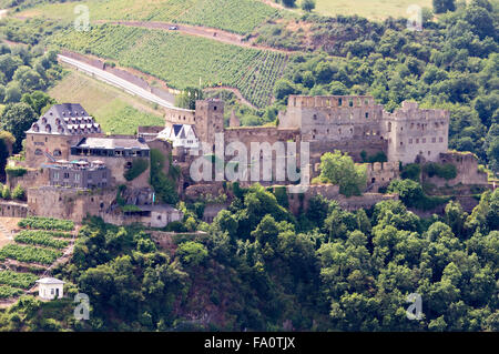 Castle Rheinfels in the Rhine Valley with surrounding vineyards, Germany - Stock Photo