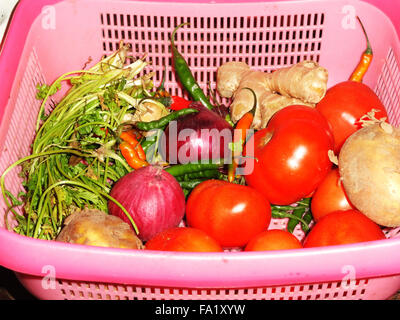 Basket of fresh organic vegetables - Stock Photo