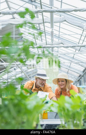 Two gardeners working in greenhouse, Augsburg, Bavaria, Germany - Stock Photo