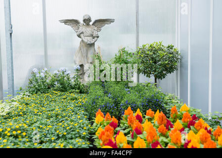 Angel statue with cockscomb flowers in garden centre, Augsburg, Bavaria, Germany - Stock Photo