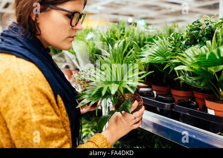 Young woman buying plants in nursery - Stock Photo