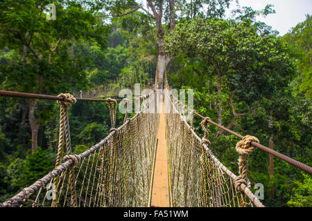 Kakum National Park is a 375 square km national park located in the Central Region of Ghana - Stock Photo