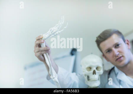 Portrait of a young doctor waving skeleton's hand in doctor's office, Freiburg Im Breisgau, Baden-Württemberg, Germany - Stock Photo