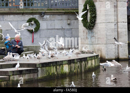 Hamburg Germany. An old man and a boy feed birds from the bank of the Kleine Alster near the Rathaus - Stock Photo