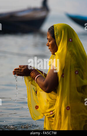Devout hindu woman in yellow saree cupping water in hands praying and bathing, an important cultural tradition, - Stock Photo