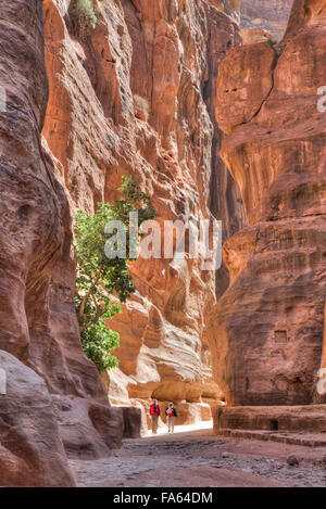 Tourists Walking thru the Sig, Petra, Jordan - Stock Photo
