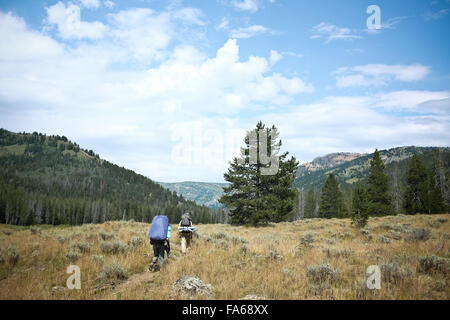 Two people hiking in mountains, wyoming, America, USA - Stock Photo