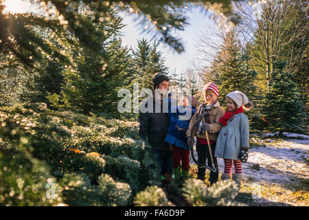 Father with three children standing in a Christmas tree farm with a hand saw - Stock Photo