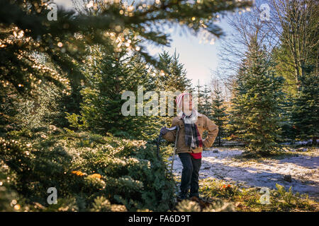 Boy standing with hand saw next to freshly cut christmas tree at farm - Stock Photo