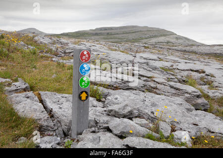 Multiple route markers on a rock bearing fossils,  on the Mullaghmore Loop Walk in the Burren, County Clare, Ireland - Stock Photo