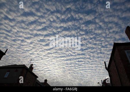 Altocumulus undulatus cloud formation is known as a mackerel sky - Stock Photo