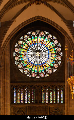 The Rose window, stained glass window, inside Strasbourg Cathedral, Strasbourg, France Europe - Stock Photo
