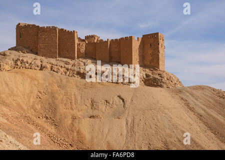 castle of Palmyra - Stock Photo