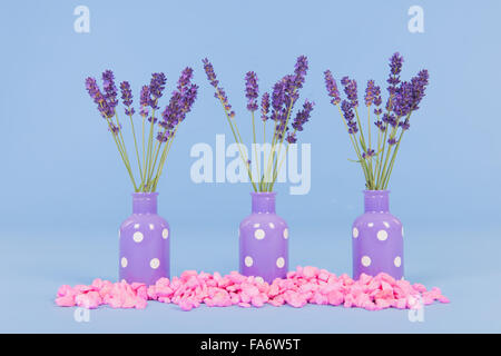 French Lavender In Purple Vases On Blue Background Stock Photo