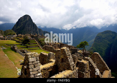 Ruins, Inca city of Machu Picchu, Huayna Picchu Mountain behind, UNESCO World Heritage Site, Urubamba, Cusco Province, - Stock Photo