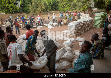 Small farmers receive sacks of seed and fertilizer at a distribution in Banfora Department, Burkina Faso. - Stock Photo