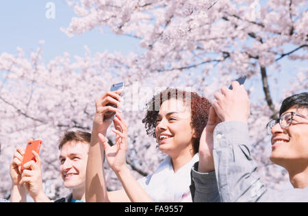 Multi-ethnic group of friends enjoying cherry blossoms blooming in Tokyo - Stock Photo