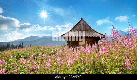 Gasienicowa Valley, Tatra Mountains, Poland - Stock Photo