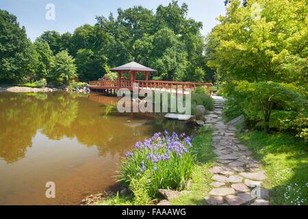 Wroclaw - Japanese Garden in Szczytnicki Park, Poland - Stock Photo