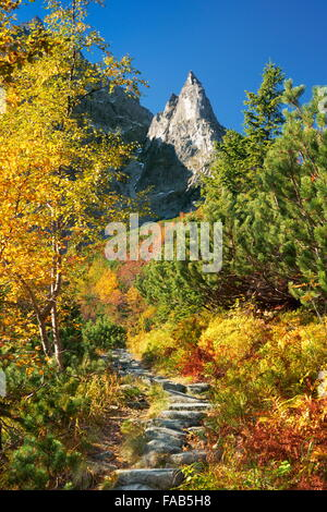 Near the Morskie Oko Lake - Tatra Mountains, Poland - Stock Photo