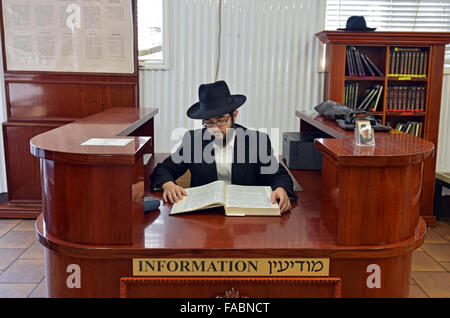 A young religious Jewish man studying Talmud as he sits at the information desk at the Ohel in Cambria Heights, - Stock Photo