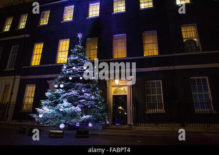 The Downing Street Christmas Tree 2015 - Stock Photo