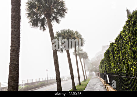 Charleston, South Carolina, USA. 26th Dec, 2015. Fog shrouds historic mansions along the Battery as unseasonably - Stock Photo