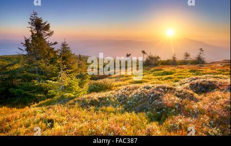 Beskidy Mountains, sunset at the Pilsko Peak, Poland