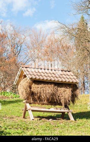 Manger with hay in a pen for large mammals. The traditional design of the trough for feeding animals during winter - Stock Photo